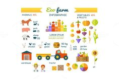 Eco Farm Infographic Elements. Business Infographic