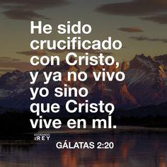 Con Cristo estoy juntamente crucificado, y ya no vivo yo, mas vive Cristo en mí; y lo que ahora vivo en la carne, lo vivo en la fe del Hijo de Dios, el cual me amó y se entregó a sí mismo por mí. (Gálatas 2:20)  #Dios #Jesus #Jesucristo #JesusCristo #Cristo #EspirituSanto #EspirituDeDios #Jehova #Biblia #Versiculo #Verso #Galatas #Escrituras #SagradasEscrituras #Amen #Fe #Avivamiento #AdorandoalRey