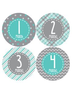 Baby Boy Monthly Milestone Birthday Stickers Style #361
