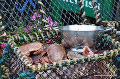 Scottish food - Crabs at Islay, Scotland