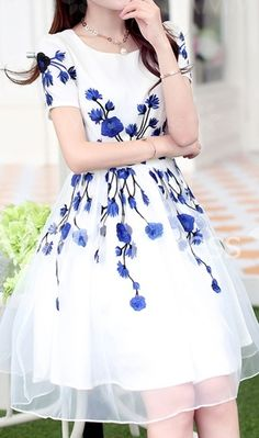 Jewel Neck Short Sleeve blue and white Embroidered Organza Dress