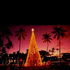 Celebrate Christmas in hawaii