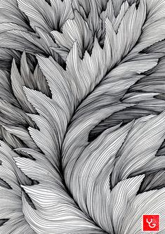 Line drawing art, contour line art, leaf drawing, texture drawing, plant dr Texture Drawing, Leaf Drawing, Drawing Art, Line Texture, Zentangle Drawings, Zentangle Patterns, Zentangles, Contour Line Art, Pencil Drawings