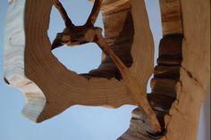 Exposition Art Blog: Cedar Eclipse - Stéphane Remusat