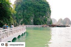 Ha Long Bay. #reiseråd #reiseliv #reisetips #reiseblogger  #Repost @osspaareise (@get_repost)  Ha Long Bay Vietnam