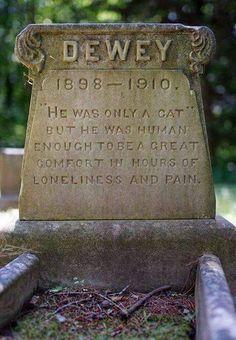 At Dedham animal cemetery near Boston. In memory of Dewey the Cat (1898 - 1910). Photo by Paul Koudounaris