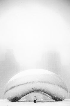 Jason Walley | Chicago Blizzard 2011, The Bean at Mid-Day