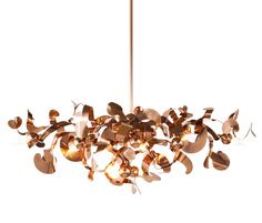 Kelp chandelier oval of Brand van Egmond via Architonic