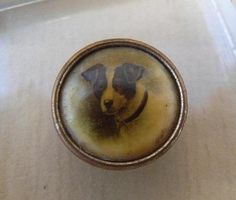Vintage Victorian Dog Picture Button Jack Russell Terrier