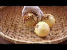 [How to] 통마늘 보관법. 두달도 거끈해요 : 달스 - YouTube Onion, Garlic, Vegetables, Knowledge, Food, Kitchen, Youtube, Life, Cooking