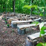 tree stumps and wood planks as outdoor wedding seating
