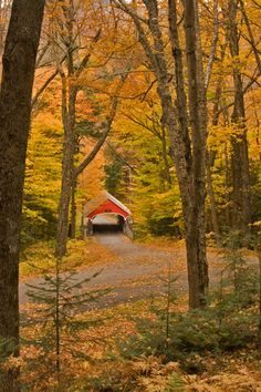 Landscape Photography Tips: New Hampshire Fall Foliage New Hampshire, Imagen Natural, Old Bridges, Autumn Scenes, All Nature, Covered Bridges, Belle Photo, Vermont, Beautiful Places