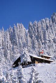 Villars-Gryon  www.villars.ch Winter Beauty, What A Wonderful World, Winter Landscape, Winter Scenes, Im In Love, Wonders Of The World, Switzerland, Cosy, Mount Everest