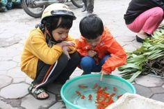 p http://viaggi.asiatica.com/
