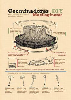 Germinador de Mucilagosas 01 Infografías de métodos de germinación