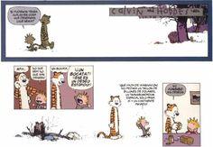 Lo que Calvin y Hobbes me ha enseñado de la vida Calvin Y Hobbes, Calvin And Hobbes Quotes, Hobbes And Bacon, Garfield, John Calvin, My Calvins, Snoopy, Fun Comics, Comic Strips