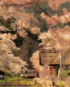 絶景を楽しむ列車の旅。一度は乗りたいローカル線20選 | びゅうたび Beautiful Places In Japan, Nostalgia Art, Aesthetic Japan, His Travel, Great View, Vacation Spots, Scenery, Castle, Landscape