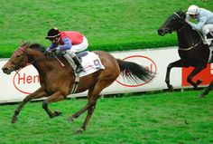 Walzerkönigin (USA) 1999 B.m. (Kingmambo (USA)-Great Revival (IRE) by Keen (GB) Winner of the Euro-Cup (GER-G2), Premio Emilio Turati (ITY-G2), Prix Chloe (FR-G3) Dam of G1 winner Wiener Walzer, G2 winners Port Douglas (IRE) & Walzertakt (GER), G3 winner Walzertraum (USA)