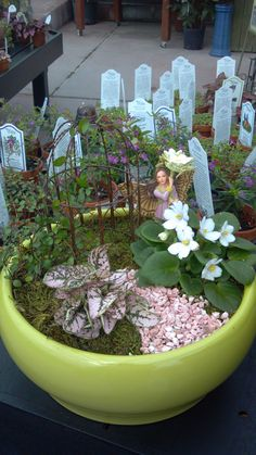 Create your own fairy garden with supplies at K & W Greenery, or purchase a completed scene created by K & W staff.    www.kwgreenery.com