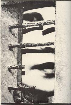 "from Shuji Terayama's ""Imaginary Phototheque: The People of the Dog-God Family"""