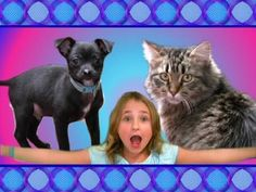 A Little Girl's Funny Pets (Silly Cat & Puppy Dog Video)