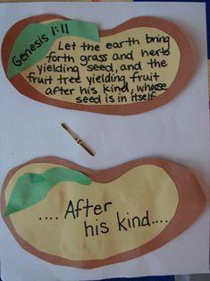Seed craft