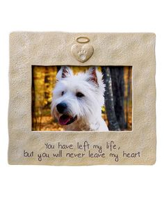 178 Best Pet Lover Mama Images Diy Ideas For Home Future House Pets