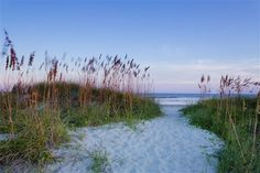Isle of Palms picture in Charleston