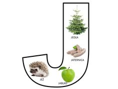 J Alphabet Worksheets, Preschool Worksheets, Teachers Corner, Letter J, Language, Montessori, Teaching, Puzzle, Education