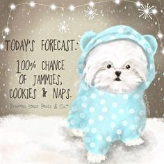 Here's today's forecast for Prince Pup & I today. What's in your forecast today? Written & Illustrated by Princess Sassy Pants & Co. Sassy Quotes, Cute Quotes, Funny Quotes, Sassy Pants, Girly, Dog Quotes, Good Morning Quotes, Happy Thoughts, Hello Everyone