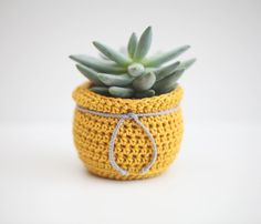 Handmade Crochet Planter | Dining Room Inspiration | Beauty and the Binky Blog