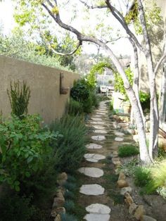 Side yard with odd shaped flat stepping stones, bordered by rosemary, trees, and. Side yard with o Plants For Small Gardens, Small Backyard Gardens, Big Garden, Backyard Garden Design, Modern Backyard, Backyard Landscaping, Garden Path, Yard Design, Fun Backyard