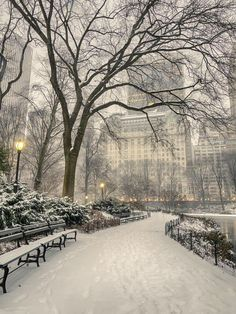 26 ideas christmas wallpaper new york central park New York Central, Central Park, New York Weihnachten, New York City, Instagram New York, Places To Travel, Places To Visit, Winter Szenen, New York Winter