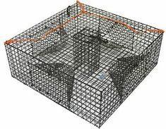 The Promar is a heavy duty shrimp trap that features 4 tunnels for easy entrance. There is also a built-in bait box located directly in the center of the shrimp trap. Built in bait box. Fishing Box, Fishing Tips, Fishing Lures, Lobster Fishing, Crab And Lobster, Crawfish Traps, Crab Net, Crab Trap, Bait Trap