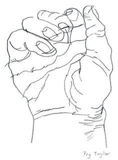 Contour Line Drawing Peg Taylor