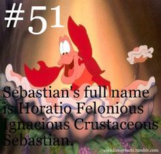 Cool Disney Facts Sebastian's full name is Horatio Felonious Ignacious Crustaceous Sebastian. I already knew this we are doing the little mermaid play and this is in the script Disney Fun Facts, Disney Memes, Disney Quotes, Disney Trivia, Interesting Disney Facts, Disney Dream, Disney Love, Disney Magic, Disney Stuff