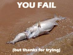 Fail Pictures and Images