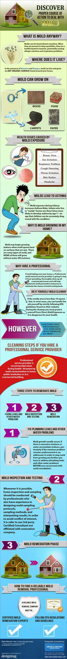 24 Best Mold Removal images