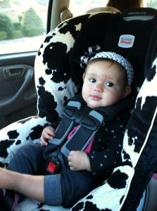 A Guide to Florida Car Seat Laws   Car seats, Florida law and Motor ...