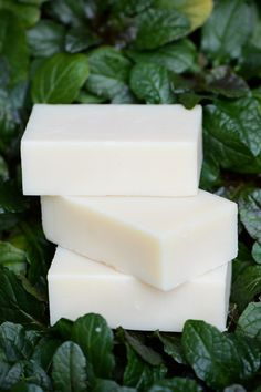 Primal Organic Shampoo Bar – Primal Life Organics.... Paleo Skincare