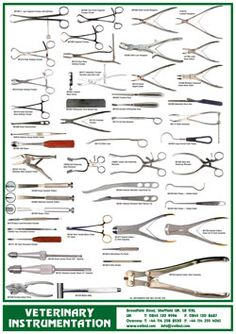 Veterinary Instrumentation :: posters new