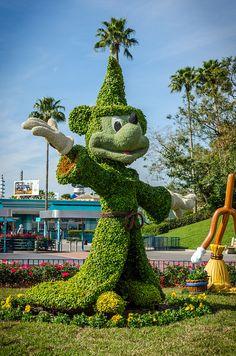 waly disney world # Fantasia # Mickey Mouse # Topiary