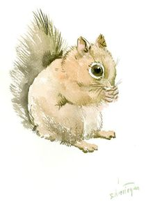 Squirrel  Art , original one of a kind watercolor painting, squirrel illustration nursery art, children art, gift cute squirrel 10 X 8 in