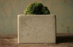 square concrete pot