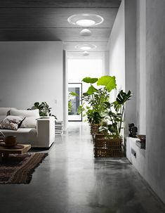 Velux Lovegrobe chandaliers down a hallway; soft, natural light via solar tubes. 01-25-12_lovegrove01.jpg