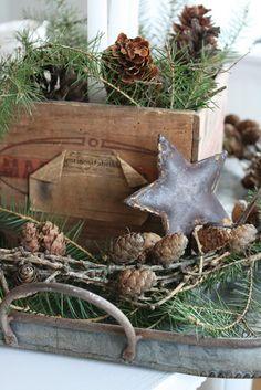 Stars, pinecones & greens