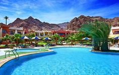 Perfectly located in a magnificent spot where the sea hugs the feet of the golden Sinai Mountains, Tropitel Dahab Oasis offers divers and non-divers the Gate Way, Visit Egypt, Online Travel, Oasis, Journey, Design Inspiration, House Design, Outdoor Decor, Home Decor