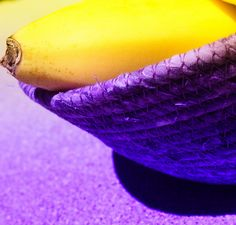 Lilac Grey, Purple Yellow, Shades Of Purple, Blue Green, Red Yellow Turquoise, Mauve, Color Violeta, Yellow Foods, Yellow Fashion