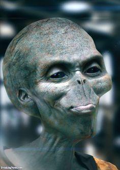 Inquisitive Alien Head