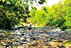 Seca do rio Bacalhau em Goias Velho - Goias - Pesquisa Google